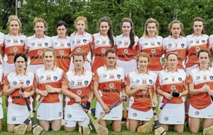 Armagh were undoubtedly the success story of Ulster camogie in 2016