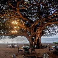 Going off the beaten track to Mozambique has its rewards