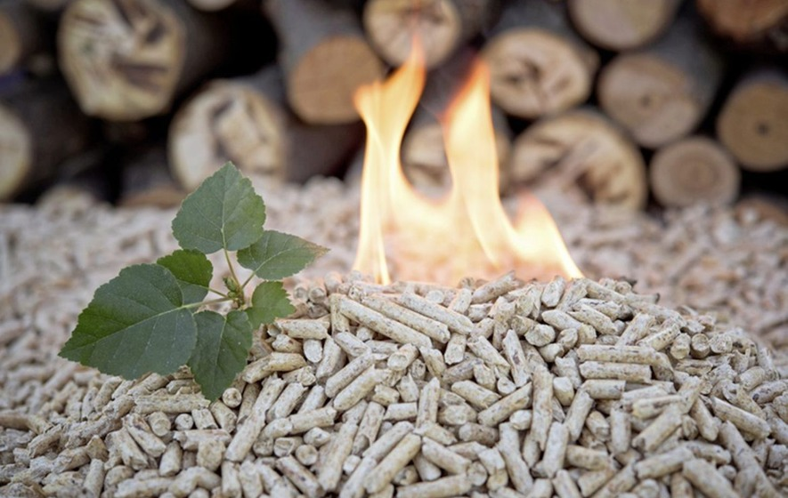 Co Tyrone company runs 12 RHI boilers to dry wood