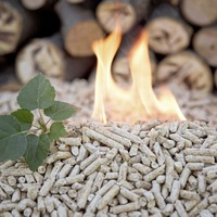 Just one per cent of all applications to RHI scheme have been unsuccessful