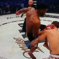 This is what a flying knee from Paul Daley will do to your face