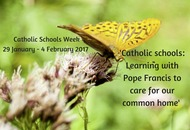 Catholic Schools Week encourages us to be advocates in environmental justice on behalf of the voiceless
