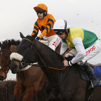 Oliver Sherwood pays tribute to 'horse of a lifetime' Many Clouds