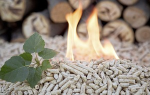 No decision yet by economy minister on naming claimants under the RHI scheme