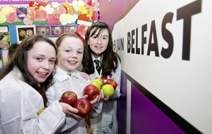 Deadline closing for primary schools to enter science fair