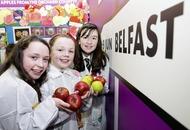 Deadline closing for primary schools to enter science fair