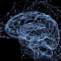 This neuroscientist has a theory on how our brain makes predictions
