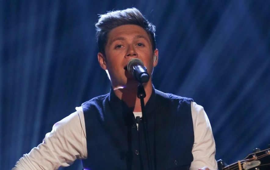 Niall Horan Tightened The Purse Strings For Backpacking