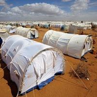 Kenyan court blocks closure of world's biggest refugee camp