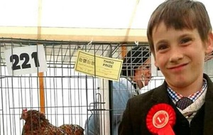 Meet the Chicken Whisperer, a 12-year-old boy who has set up a poultry club