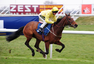 Mark Johnston's Sutter County best bet at Newcastle