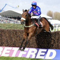 Cue Card is the ace up Colin Tizzard's sleeve at Ascot