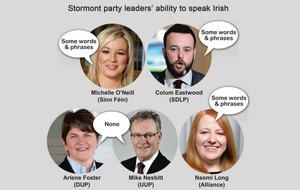 Just 3% of assembly candidates speak fluent Irish