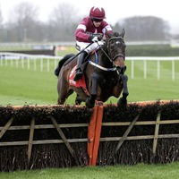 Apple's Jade can warm up for Cheltenham in style