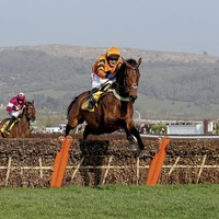 Colin Tizzard setting his sights on a Christmas return for injured Thistlecrack