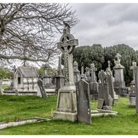 'Dead interesting' tours tell untold history of Glasnevin Cemetery