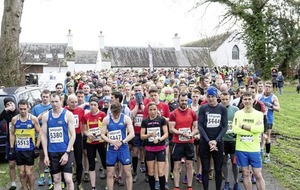 Born2Run's Run Forest Run series ends in Castlewellan