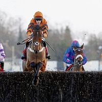 Under starters order for Cheltenham chat in Minerstown and Belfast