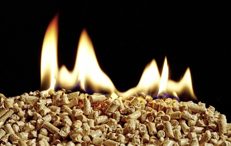 Companies receiving RHI cash can be named, judge rules