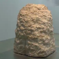 An artist has been living inside this rock for a week