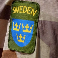 What's going on with Sweden bringing back the military draft?