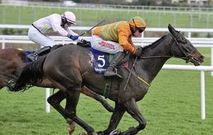 Jack can jump to victory at Navan