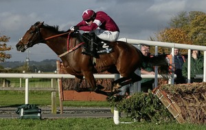 Identity Thief can nick the glory at Leopardstown