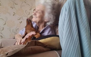 This puppy making a nan with Alzheimer's very happy will make your heart explode