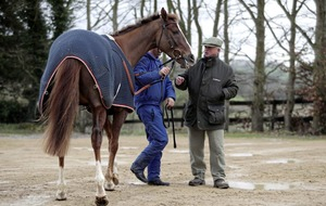 Native River makes long journey from Dromahane point-to-point to Gold Cup