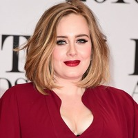Adele halts concert after fan suffers cardiac arrest