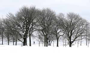 North east of US paralysed as snow storm drops a foot of snow