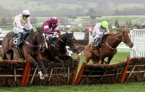 Winners hard to find on good first day for the bookies at Cheltenham