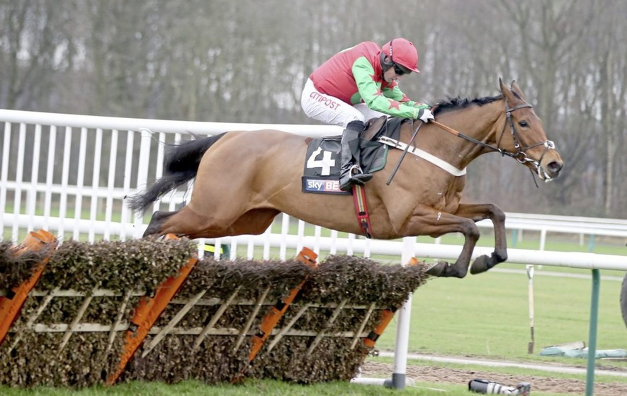 Noel Fehily: I'm hopeful than Neon Wolf can give me ...