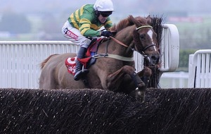 King charge Uxizandre can take flight in Ryanair Chase at Cheltenham