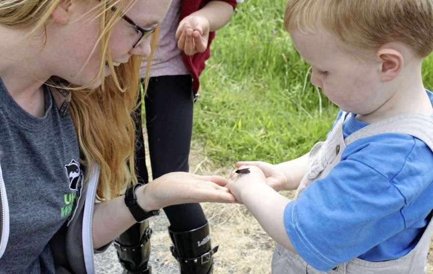 Outdoors: Ulster Wildlife scheme sets budding nature lovers up for careers in conservation