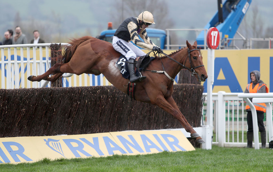 Yorkhill wins at Cheltenham for Enda McGinley's chosen charity, Down's & Proud