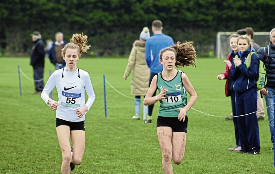 Three Ulster victories at Irish Schools' Cross Country Championships at Mallusk