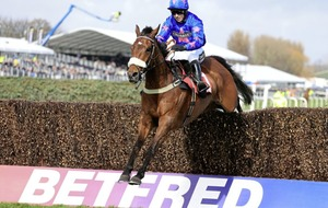 Colin Tizzard taking no sides in Cheltenham Gold Cup