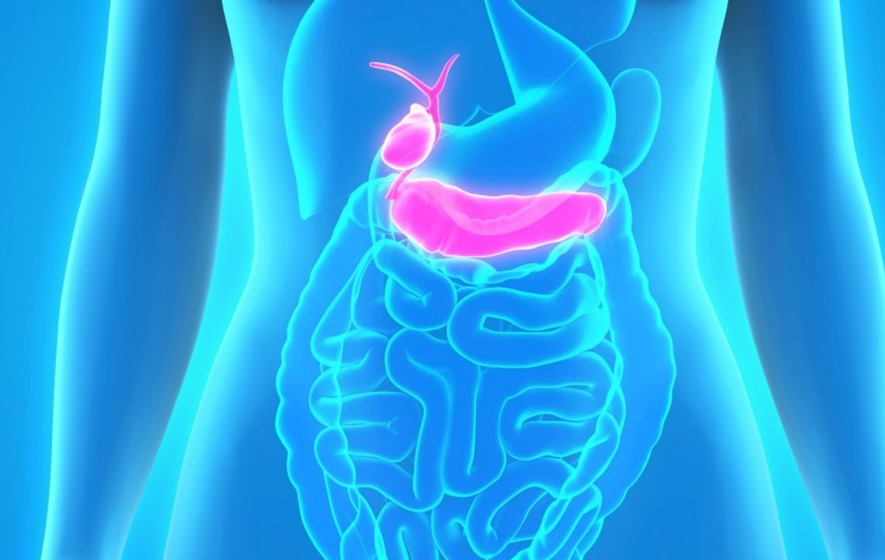 Scientists are looking for people with strong immune systems to help find a cure for pancreatic cancer