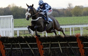 Diamond King ready to sparkle at Thurles