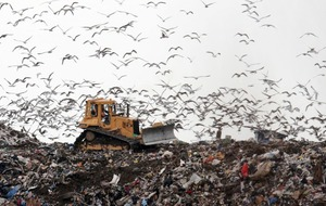 7 things you're doing everyday that are wrecking the planet