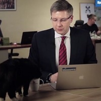 Watch this fame-hungry cat gatecrashing a Lativian mayor's online Q&A