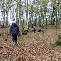 People `more motivated to be active' when connecting with nature
