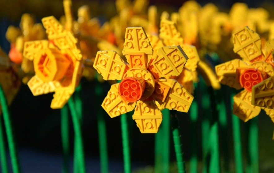 1,700 Lego daffodils just appeared in Hull because why not?