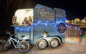 Giddy up . . . Fermanagh sisters horsing around with quirky mobile bar venture