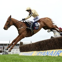 Yorkhill the star of the Easter show at Fairyhouse