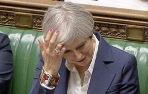 Theresa May had said no election until 2020
