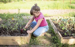Grow It Yourself a fantastic way to get kids eating and learning about food
