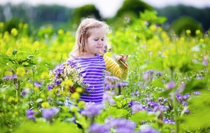Ask the Expert: How do I treat my child's hay fever?