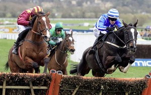 Djakadam can cut John down to Size in Punchestown Gold Cup
